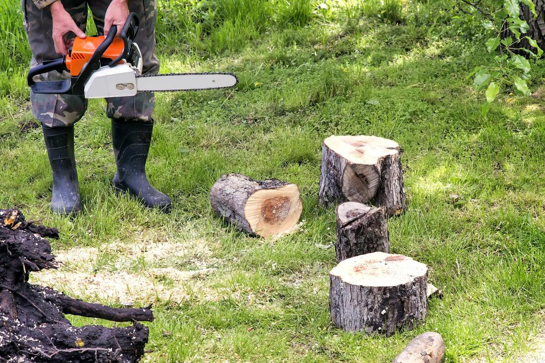 Tree Service-Texarkana TX Professional Landscapers & Outdoor Living Designs-We offer Landscape Design, Outdoor Patios & Pergolas, Outdoor Living Spaces, Stonescapes, Residential & Commercial Landscaping, Irrigation Installation & Repairs, Drainage Systems, Landscape Lighting, Outdoor Living Spaces, Tree Service, Lawn Service, and more.